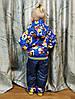 Детский демисезонный комбинезон куртка и штаны для мальчика синий 2-3 года, фото 4