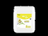 Универсальная укрепляющая акриловая грунтовка Эконом класса для стен White Aster 10 л