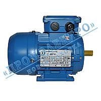 Электродвигатель трехфазный АИР 63A6 0,18кВт 1000об/мин (IM 1081) Лапа