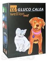 Набор Wellion GLUCO CALEA глюкометр для тестирования уровня сахара в крови