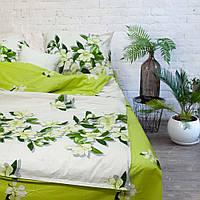 Комплект постельного белья ЕВРО Viluta100 % хлопок, постельный комплект евро хлопок