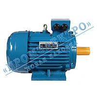 Электродвигатель трехфазный АИР 132M6 7,5кВт 1000об/мин (IM 1081) Лапа