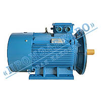 Электродвигатель трехфазный АИР 315М6 132кВт 1000об/мин (IM 2081) Лапа+фланец