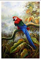 Картина раскраска по номерам 40х50