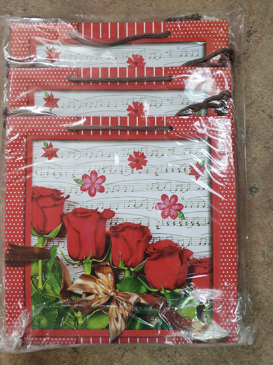 Подарочный бумажный пакет КВАДРАТ ''Ноты'' (24*24*10)