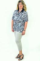 Блуза женская из хлопка стрейчевая , бл 056-2 ,48-56