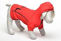 Толстовка куртка для собак трикотаж  Толстовка, Собаки, Лори, 21*27, Весна/осень, Украина