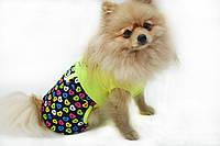 Комбинезон для собак трикотажный Радуга желтый  йорк 1