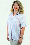 Блуза Бл 056-1 женская из хлопка стрейчевая ,48-54, фото 5