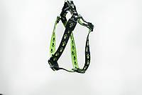 Шлейка для собак капроновая Лапки для декоративных собак, фото 1