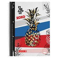 Колледж-блок А4 Premium, клетка, Pineapple