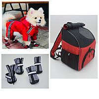 Комплект для собак дождевик, ботинки, сумка рюкзак, готовое решение  №0 -25*40