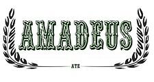"Інтернет магазин ""Amadeus"""