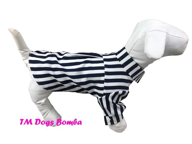 Рубашка для собак черно белая полоска