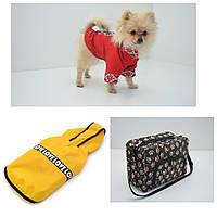 Комплект для собак футболка, дождевик, органайзер, готовое решение  размер мини