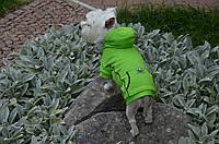 Толстовка куртка для собак трикотаж