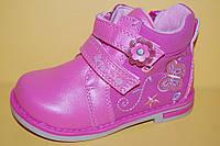 Детские демисезонные Ботинки Том.М Китай 0881 Для девочек Фуксия размеры 21_26, фото 1