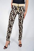 Леггинсы женские 109R030(036-1) Леопардовый