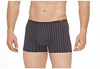 Бамбуковые мужские трусы шортики, в тонкую полоску, с узкой резинкой TASO 5590
