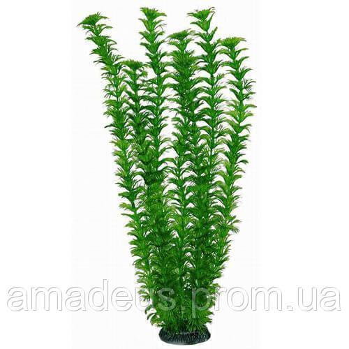 Aquatic Plants Аквариумное Растение, 46 См Х 6 Шт/уп Арт.4686