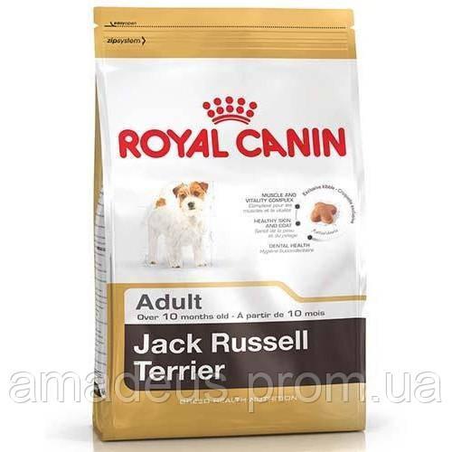 Сухой Корм Royal Canin Jack Russel Terrier Adult Для Собак Породы Джек-Рассел-Терьер С 10 Месяцев, 500 Г