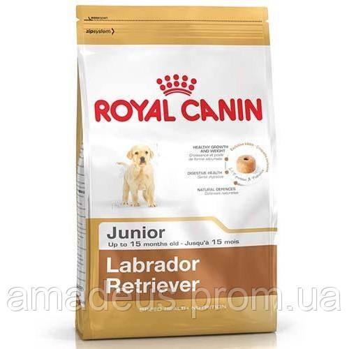 Сухой Корм Royal Canin Labrador Retriever Junior Для Щенков Породы Лабрадор Ретривер До 15 Месяцев, 1 Кг