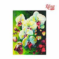 Холст на картоне с контуром, Натюрморт № 18, 30*40, хлопок, акрил, ROSA START