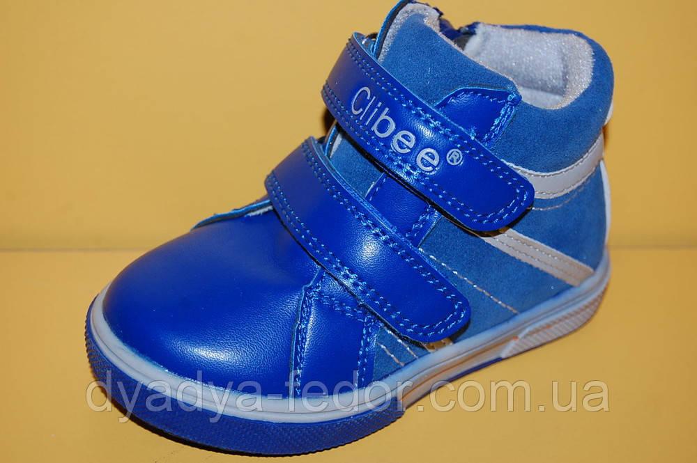 Детские демисезонные Ботинки Clibee Польша h120 Для мальчиков Голубой размеры 21_26