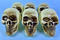 Набор черепов 6,5 см (6шт)