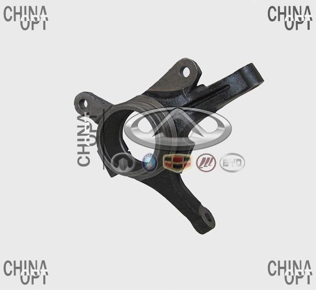 Поворотный кулак левый, Chery QQ [S11, 1.1], S11-3001011, Original parts