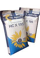 Семена подсолнечника НС Х 195 (стандарт 8 кг), фото 1