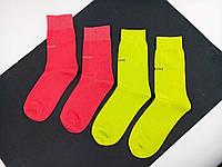 Шкарпетки Balenciaga pink