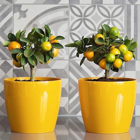 Горшок для цветов Магнолия, желтый 135 мм