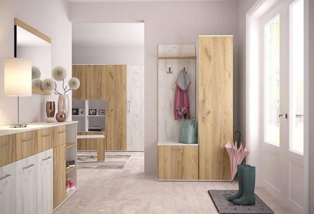 Шкаф для одежды 1000х500х2090 Крафт, фото 2