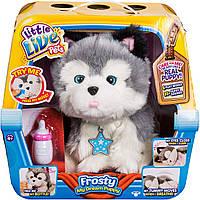 Интерактивная игрушка Moose Little Live Pets Ласковый щенок хаски Фрости