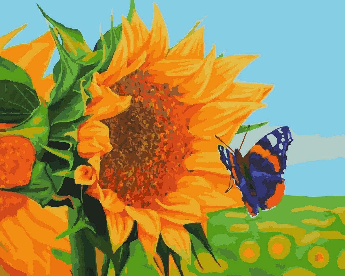 Рисование по номерам Бабочка на подсолнухе BK-GX28671 Rainbow Art 40 х 50 см (без коробки)