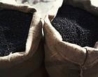 Перец черный молотый 3 сорт, фото 4