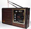 Радиоприемник NEEKA NK-9933 UAR