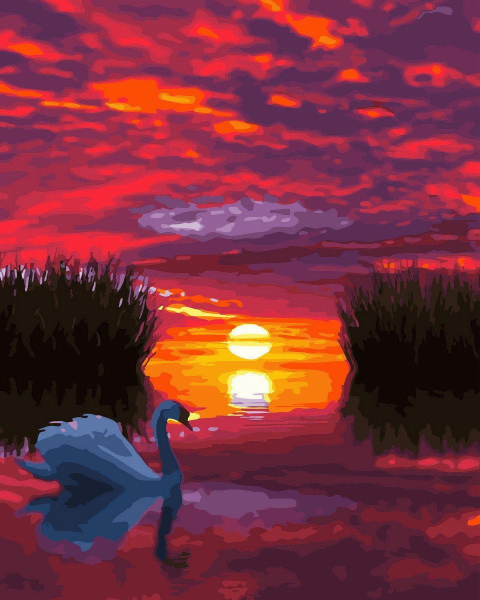 Картины по номерам Лебедь на закате BK-GX29423 Rainbow Art 40 х 50 см (без коробки)