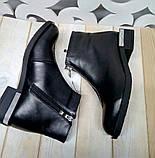 Ferre стильні жіночі демісезонні чоботи натуральна шкіра змійка попереду маленький квадратний каблук, фото 5