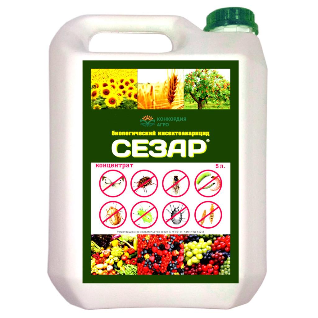 Инсектицид Сезар  5л канистра