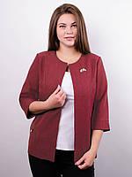 Омега лен. Изысканный нарядный пиджак плюс сайз, фото 1