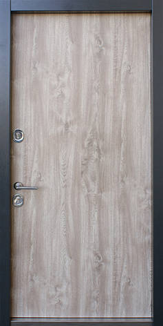 Двери уличные, STRAJ Proof, модель PARTY BZ, комплектация Proof Standard Hook, коробка 120 мм, MUL-T-LOCK 352k, фото 2