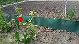 Бордюрная лента  15 см x 15 м, пластик, фото 9
