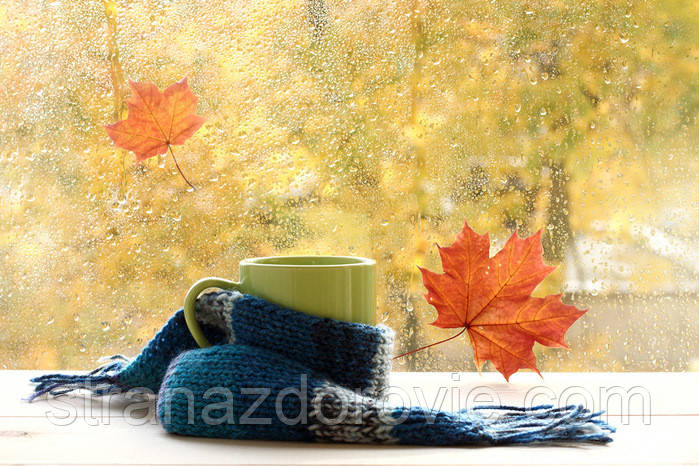Осенняя простуда.