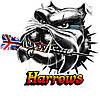 Дротики дартс Silver Arrow Harrows Англия 20, 22 и 24 грамма, фото 3