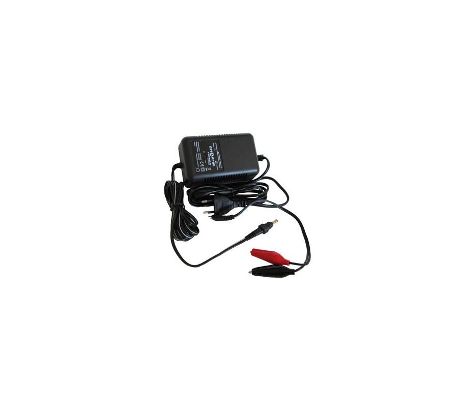 Зарядное устройство для Аккумулятора  Энергия EH-605 для SLA MW (2/6/12V ток 600 мА max)
