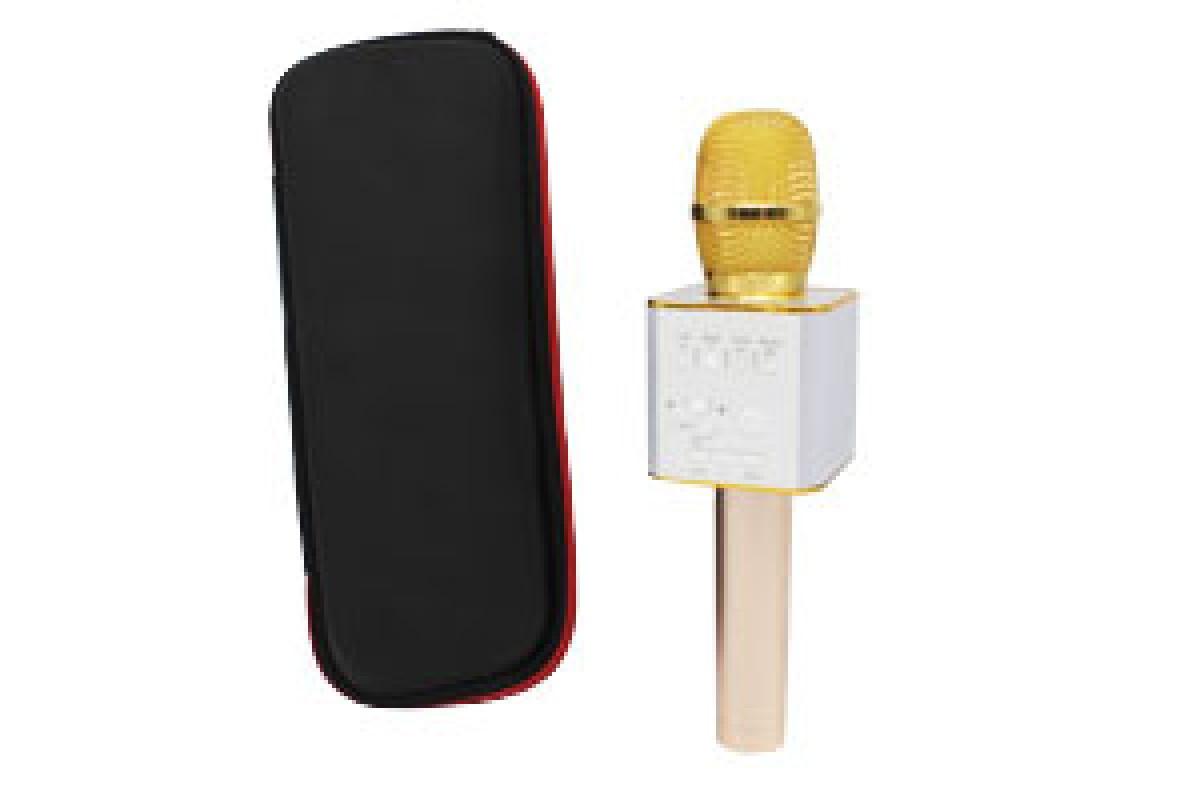 Караоке микрофон-колонка Q9 Plus Bluetooth 2 в 1 в футляре Золотой