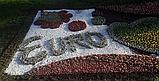 Бордюрна стрічка садова 30 см x 25 м пластик, фото 8