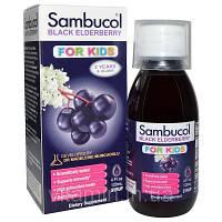 Поддержка иммунной системы для детей, сироп Чёрная Бузина,  Sambucol, 120 мл